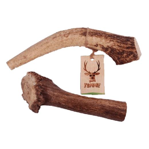 16941 - Zoolekker Deer Antler Extra Large Yummie 225-270gr