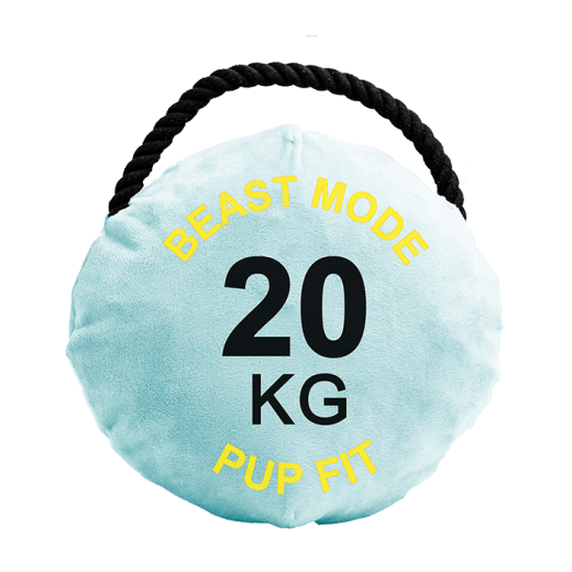 DA727 - 4 pc. per unit Pupfit Kettlebell Small